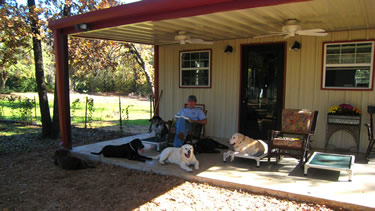 Photo of dogs relaxing with each other on cage-free porch of the dog boarding facility.